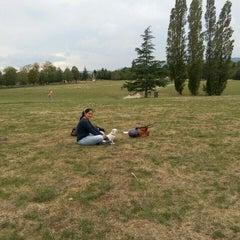 Photo taken at Parc départemental de Lacroix-Laval by Milton F. M. on 9/13/2015