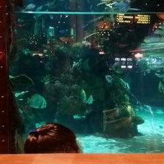 Photo taken at Mermaid Bar by Carl R. on 11/16/2014