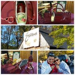 Photo taken at Sorrenti Cherry Valley Vineyards by Rachel B. on 10/10/2015