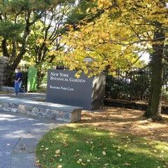 Photo taken at Monet's Garden at The New York Botanical Garden by Megan H. on 10/20/2012