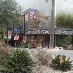Photo taken at Dallas World Aquarium by Azman A. on 1/28/2013
