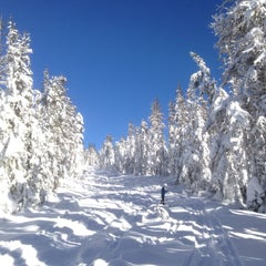 Photo taken at Mt Hood National Forest by Anna J. on 1/2/2015