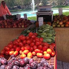 Photo taken at Century City Farmer's Market by Nina N. on 6/13/2013