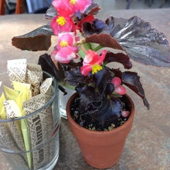 Photo taken at High Hand Nursery & Cafe by Noelle M. on 3/29/2015