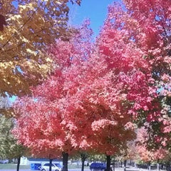 Photo taken at Cleary Lake Regional Park by Joe E. on 10/2/2012