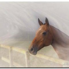 Photo taken at Royal Berkshire Polo Club by Michael T. on 10/10/2014