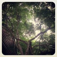 Photo taken at Hadsaengchan Resort & Restaurant by Benjarat S. on 9/21/2013