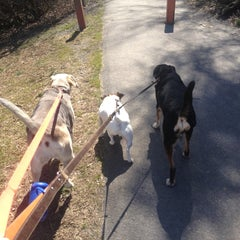 Photo taken at Oakton Dog Park by Linda H. on 3/10/2013