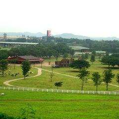 Photo taken at ฟาร์มโชคชัย (Farm Chokchai) by Uthai P. on 8/7/2013