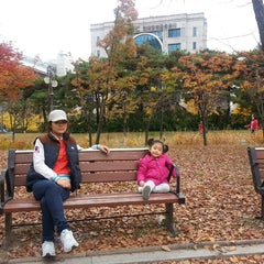 Photo taken at 여의도공원 문화의 마당 (Yeouido Park Culture Square) by Yeonkwon J. on 11/9/2013