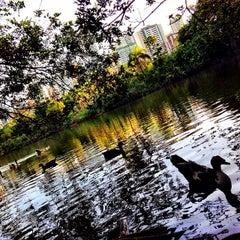 Photo taken at Lago do Parque de Águas Claras by Pedro M. on 1/6/2014