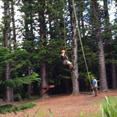Photo taken at Just Live Zipline Treetop Tour by Amir A. on 11/8/2012