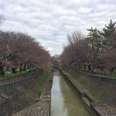 Photo taken at 尾崎橋 by ヒカル on 3/26/2016
