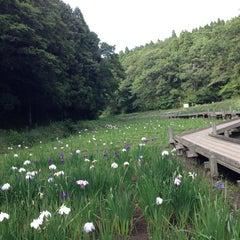 Photo taken at 千葉市昭和の森公園 by kaorun on 6/15/2013