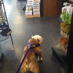 Photo taken at Global Pet Food Outlet by Taneshia C. on 5/25/2013