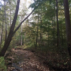 Photo taken at Spring Mill State Park by Andrew R. on 10/9/2015