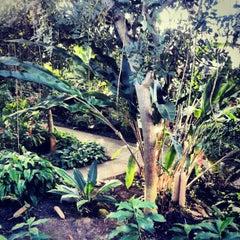 Photo taken at Matthaei Botanical Gardens by Darin M. on 1/9/2013