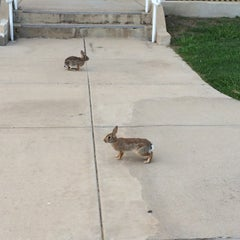 Photo taken at Tarrant County College (Southeast Campus) by Brent . on 8/12/2014