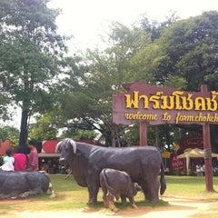 Photo taken at ฟาร์มโชคชัย (Farm Chokchai) by ✨💓TeddyBearYUi G. on 10/23/2012