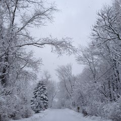 Photo taken at MAINE -  The Way Life Should Be ! by Joanne S. on 3/8/2013