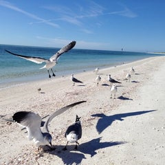 Photo taken at Shell Island by Aaron R. on 12/4/2012