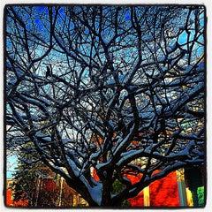 Photo taken at Corn Hill by John J. on 11/28/2014
