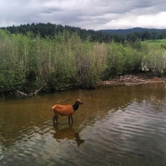Photo taken at Evergreen Dam by Tyler D. on 6/15/2014