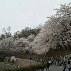 Photo taken at 경희대학교 국제캠퍼스 by Yuuichi A. on 4/12/2015