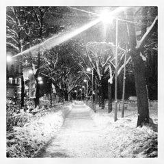 Das Foto wurde bei Rossauer Lände von karin am 1/17/2013 aufgenommen