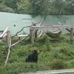 Photo taken at Binghamton Zoo at Ross Park by D L. on 9/1/2014