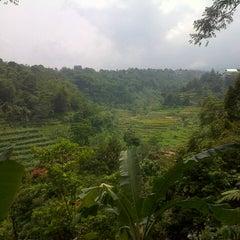 Photo taken at Lembur Pancawati by Ragil W. on 11/10/2012