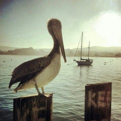 Photo taken at Old Fisherman's Wharf by Charlie R. on 10/29/2012