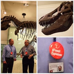 Photo taken at World's Largest Dinosaurs Exhibit at the American Museum of Natural History by Andrew B. on 3/11/2015