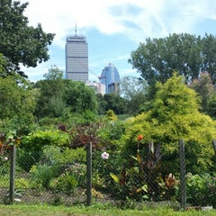 Photo taken at Fenway Victory Gardens by Al S. on 8/10/2013