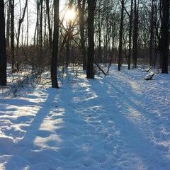 Photo taken at Howard Dog Park by Lisa E. on 3/8/2014