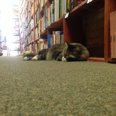 Photo taken at Downtown Books by Stephen D. on 4/5/2014
