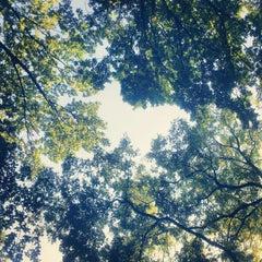 Photo taken at Tašmajdanski park by Milos D. on 10/5/2012