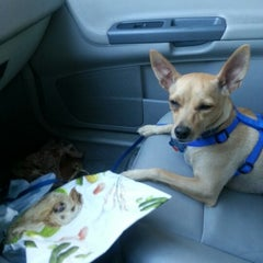 Photo taken at Banfield Pet Hospital by Alike R. on 9/17/2012