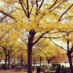 Photo taken at Hornbake Plaza by Laura M. on 11/1/2013