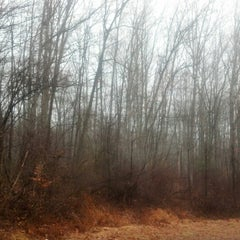 Photo taken at Nescopeck State Park by Michael M. on 12/4/2012