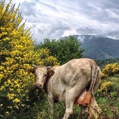 Photo taken at Novara di Sicilia by monique a. on 5/24/2014
