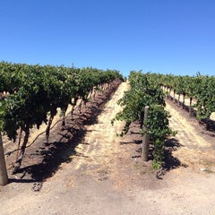 Photo taken at Opolo Vineyards by Loris Y. on 8/24/2014