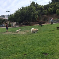 Photo taken at St. Mary's Park Dog Run by Donnie B. on 7/1/2015