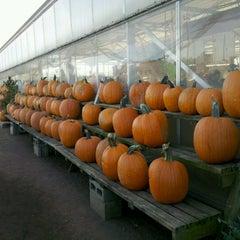 Photo taken at Shady Brook Farm by Fernanda P. on 10/14/2012