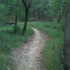 Photo taken at Allaire Moutain Bike Trails by GetOutsideNJ Jeff on 9/27/2011