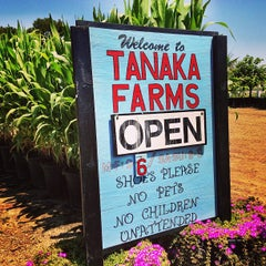 Photo taken at Tanaka Farms by Caryn B. on 5/2/2013