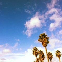 Photo taken at Ocean Park Playground by Mani B. on 1/6/2013