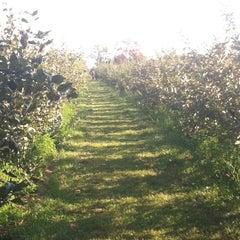 Photo taken at Mack's Apples by Wayne R. on 9/22/2012