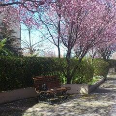 Photo taken at Bilkent Üniversitesi by Sularkralicesi on 3/31/2013