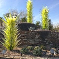 Photo taken at Desert Botanical Garden by Jac on 2/2/2013